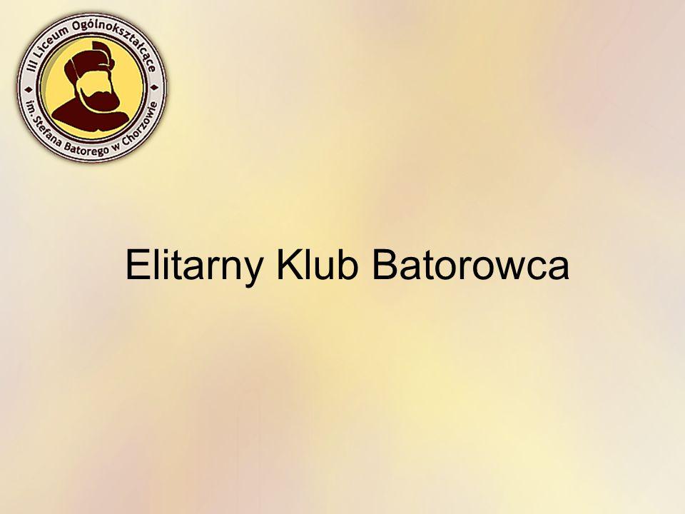 II miejsce w siedmioboju lekkoatletycznym na Mistrzostwach Śląska Juniorów i Juniorów Młodszych w 2009r, III miejsce na Licealiadzie szkolnej, wolontariat podczas zawodów Euro Basket 2009 w Katowicach, III miejsce w biegu na 100m przez płotki na Mistrzostwach Śląska Juniorów i Juniorów Młodszych w 2007r.