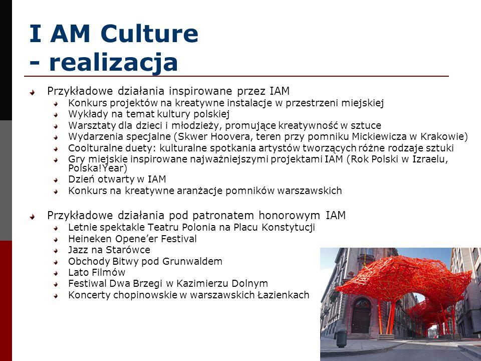 I AM Culture - realizacja Przykładowe działania inspirowane przez IAM Konkurs projektów na kreatywne instalacje w przestrzeni miejskiej Wykłady na tem