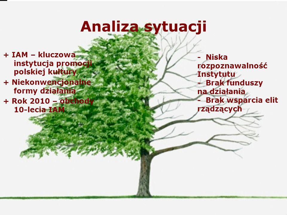 Analiza sytuacji + IAM – kluczowa instytucja promocji polskiej kultury + Niekonwencjonalne formy działania + Rok 2010 – obchody 10-lecia IAM - Niska r