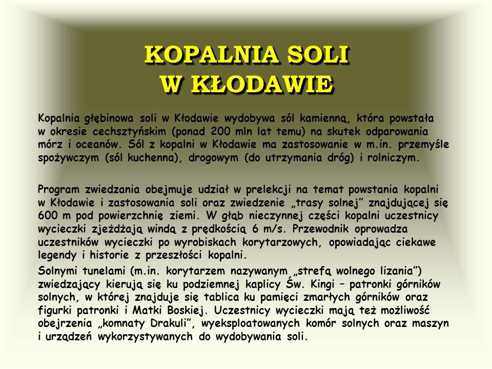 KOPALNIA SOLI W KŁODAWIE Kopalnia głębinowa soli w Kłodawie wydobywa sól kamienną, która powstała w okresie cechsztyńskim (ponad 200 mln lat temu) na