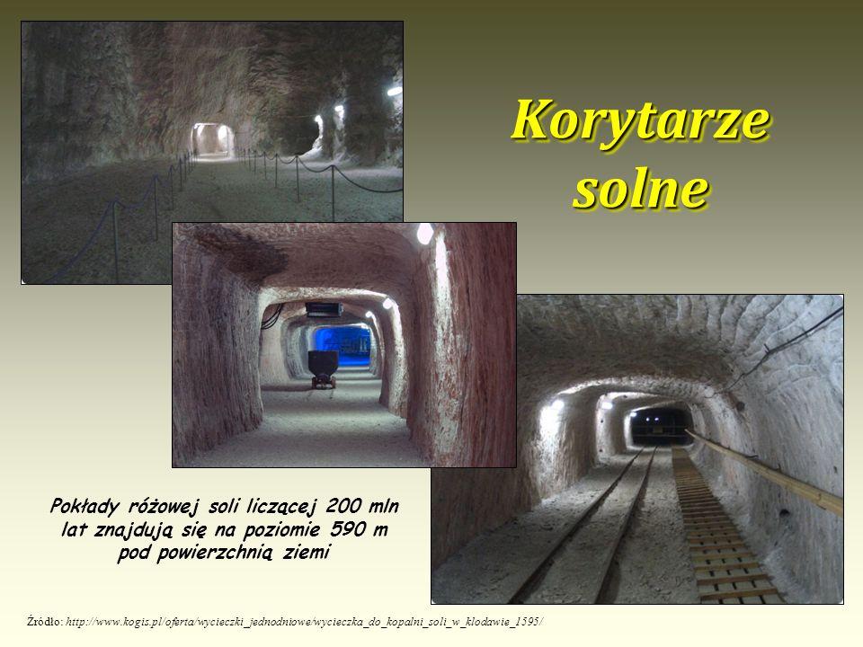 Korytarze solne Źródło: http://www.kogis.pl/oferta/wycieczki_jednodniowe/wycieczka_do_kopalni_soli_w_klodawie_1595/ Pokłady różowej soli liczącej 200