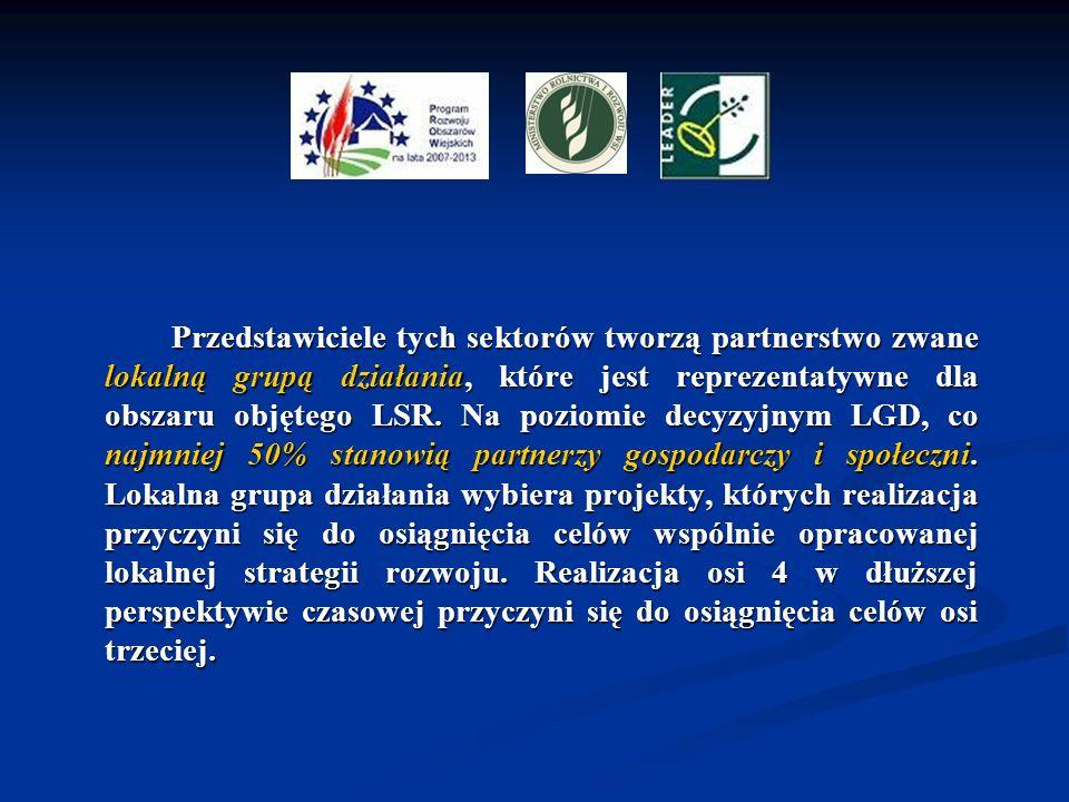 Przedstawiciele tych sektorów tworzą partnerstwo zwane lokalną grupą działania, które jest reprezentatywne dla obszaru objętego LSR. Na poziomie decyz