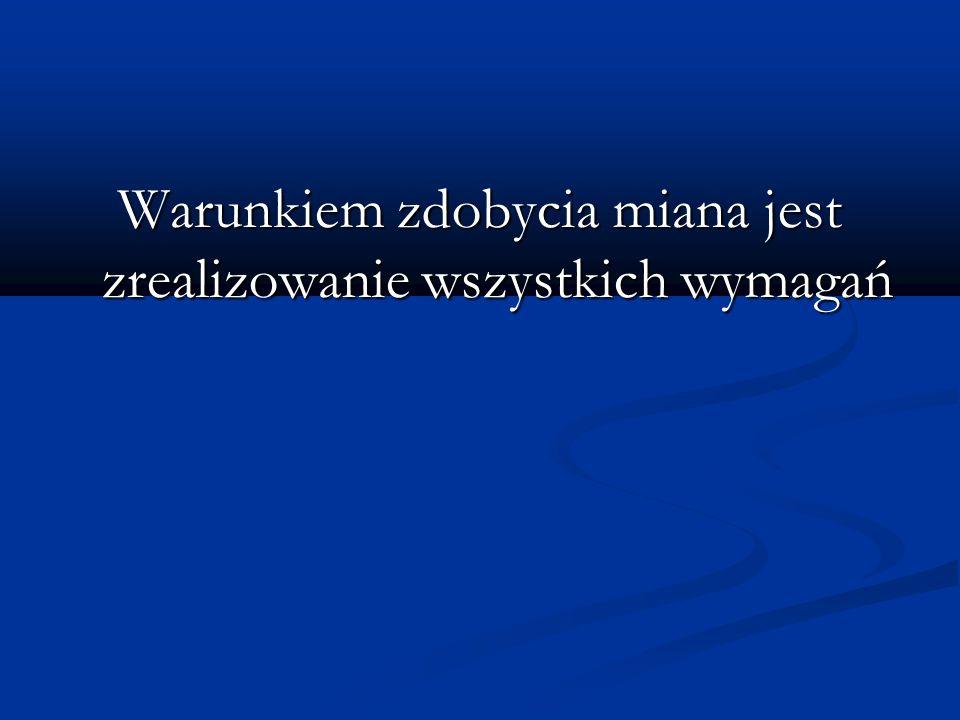 Etapy projektu: Zgłoszenie Praca drużyny Sprawozdanie - ankieta Do 7 listopada zgłoszenie poprzez e- mail.