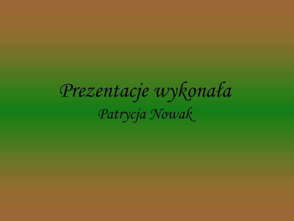 Większość terenu parku zajmują lasy z udziałem jodły. Puszcza Jodłowa - unikatowy w skali światowej zespół leśny jedliny polskiej, tj. bór jodłowo - b