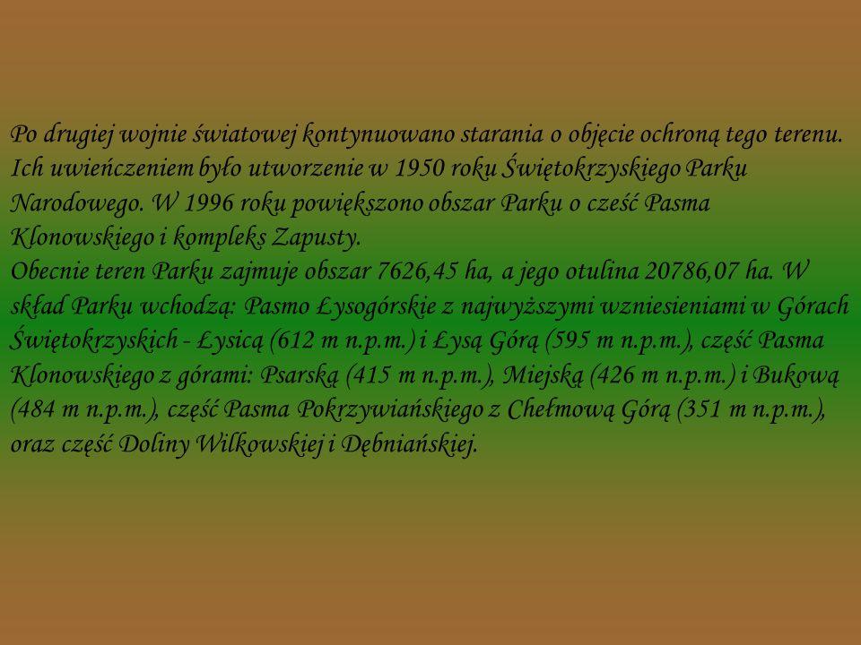 Już na początku XX wieku narodziła się idea objęcia ochroną terenu Łysogór. W 1908 roku Polskie Towarzystwo Krajoznawcze - Komisja Ochrony Zabytków Pr