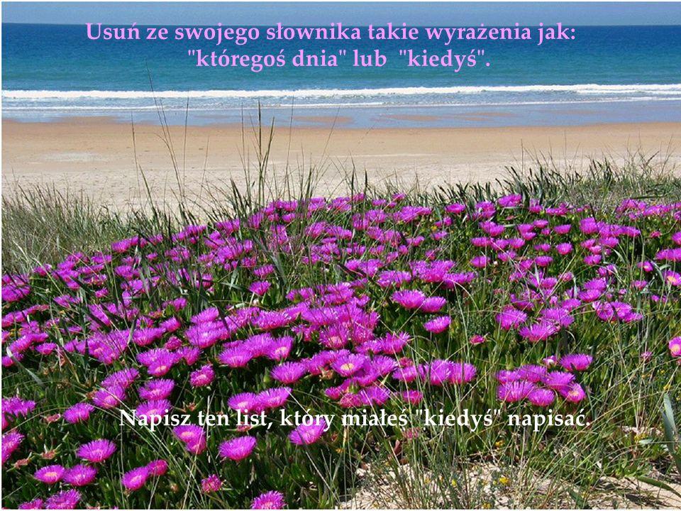 Życie jest łańcuchem momentów przyjemności, a nie tylko walką o przeżycie. Używaj kryształowych kieliszków. Nie zostawiaj swoich najlepszych perfum na