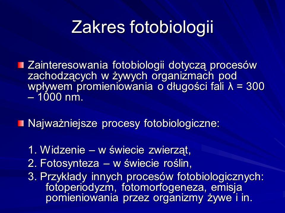 Zakres fotobiologii Zainteresowania fotobiologii dotyczą procesów zachodzących w żywych organizmach pod wpływem promieniowania o długości fali λ = 300