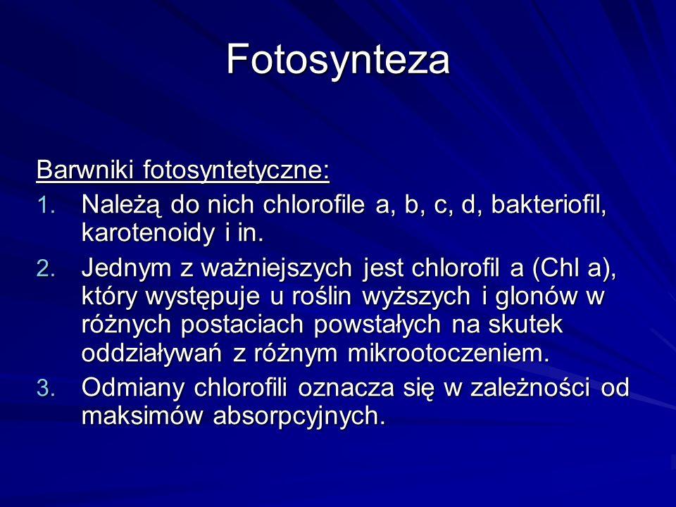 Fotosynteza Barwniki fotosyntetyczne: 1. Należą do nich chlorofile a, b, c, d, bakteriofil, karotenoidy i in. 2. Jednym z ważniejszych jest chlorofil