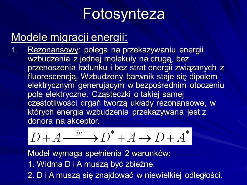 Fotosynteza Modele migracji energii: 1. Rezonansowy: polega na przekazywaniu energii wzbudzenia z jednej molekuły na drugą, bez przenoszenia ładunku i