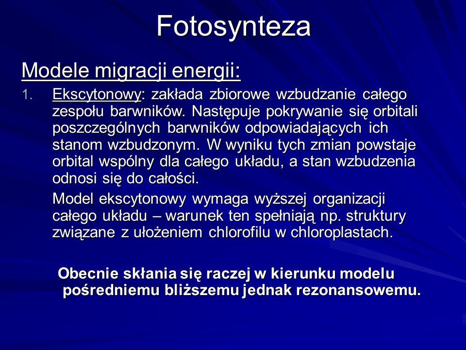 Fotosynteza Modele migracji energii: 1. Ekscytonowy: zakłada zbiorowe wzbudzanie całego zespołu barwników. Następuje pokrywanie się orbitali poszczegó