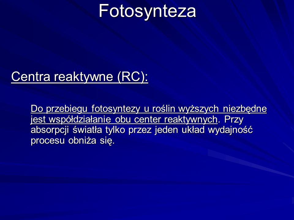 Fotosynteza Centra reaktywne (RC): Do przebiegu fotosyntezy u roślin wyższych niezbędne jest współdziałanie obu center reaktywnych. Przy absorpcji świ