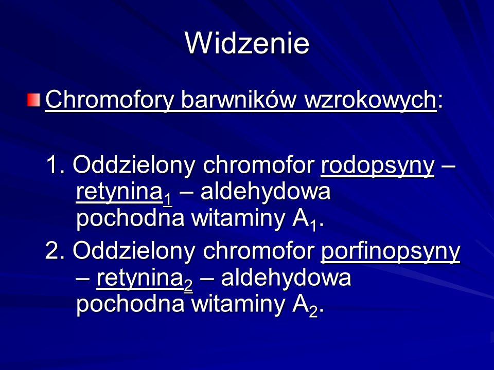 Widzenie Chromofory barwników wzrokowych: 1. Oddzielony chromofor rodopsyny – retynina 1 – aldehydowa pochodna witaminy A 1. 2. Oddzielony chromofor p