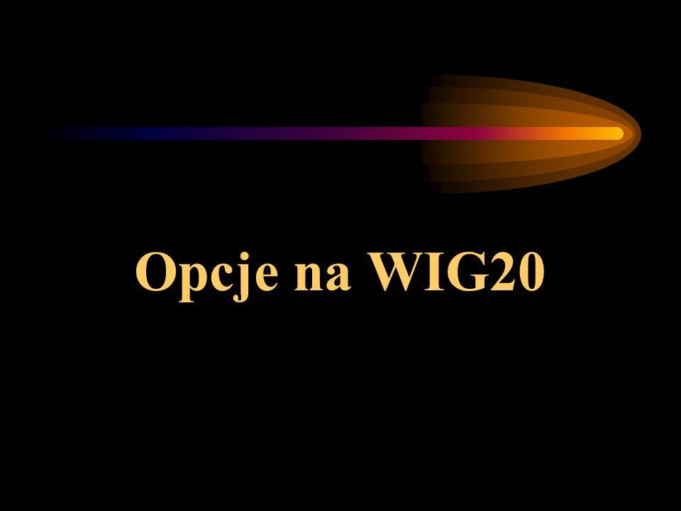 Opcje na WIG20
