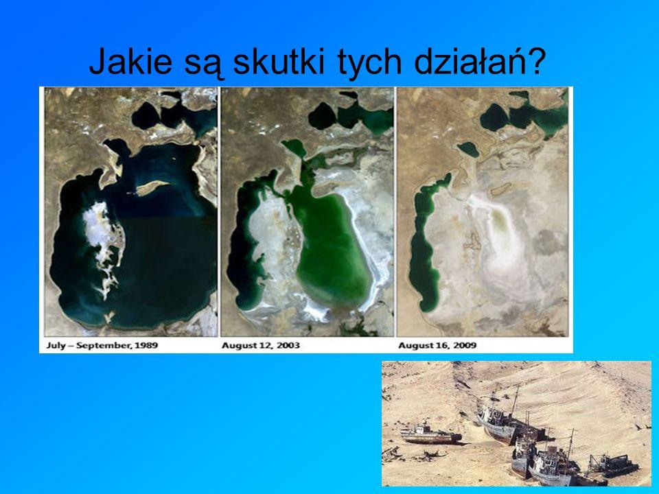 Jakie są skutki tych działań? Dziś jezioro jest szesnaste największe, złożone z czterech osobnych zbiorników. Co roku poziom wody jeziora spada o 80-9