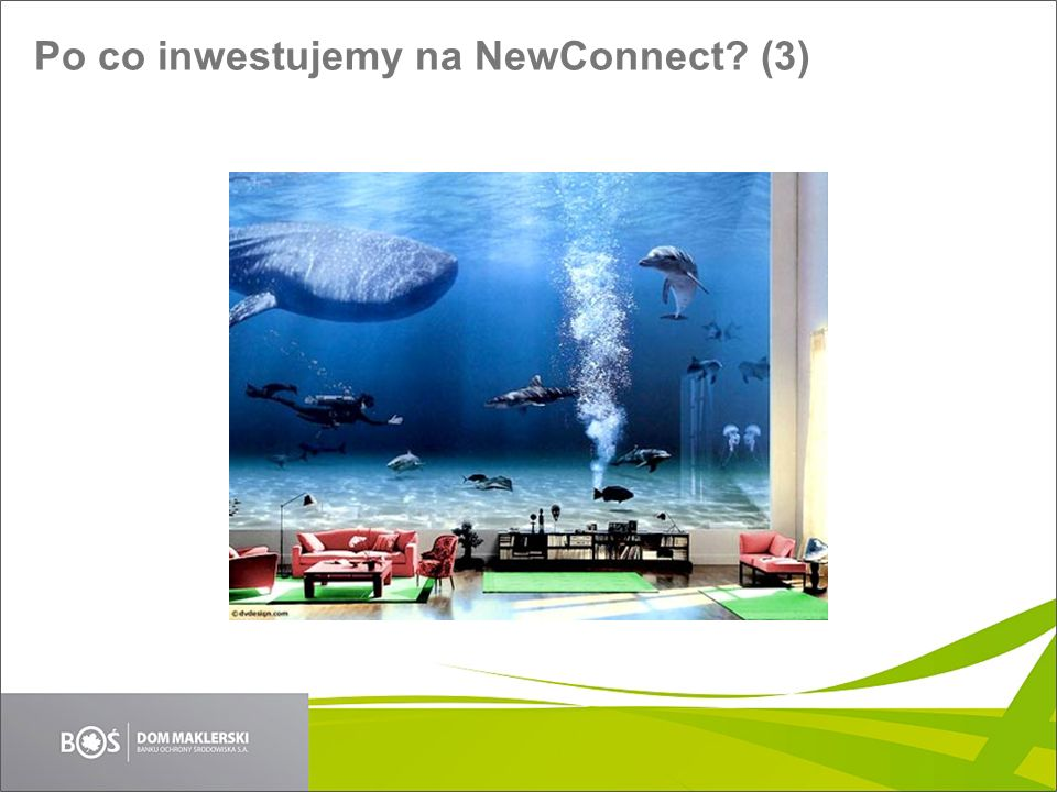 Po co inwestujemy na NewConnect (3)