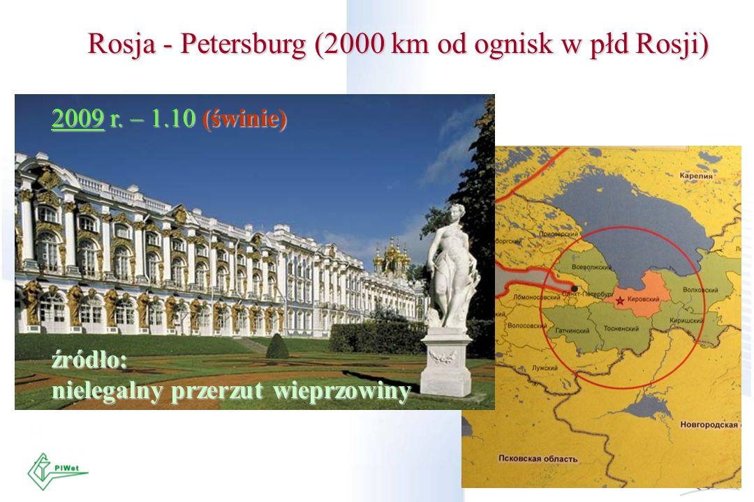 Rosja - Petersburg (2000 km od ognisk w płd Rosji) 2009 r. – 1.10 (świnie) źródło: nielegalny przerzut wieprzowiny