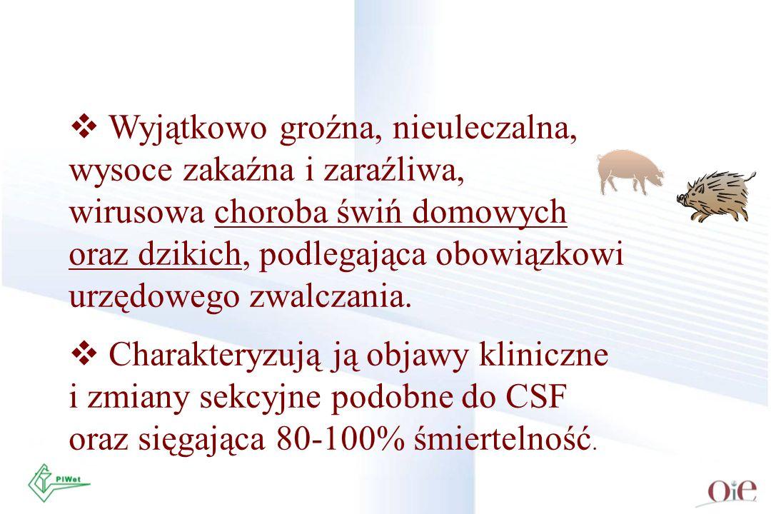 Próbki krwi do badań serologicznych winny być pobrane od świń chorujących maksymalnie długo lub od świń podejrzanych, które miały styczność ze zwierzętami zakażonymi lub podejrzanymi o zakażenie ASFV.