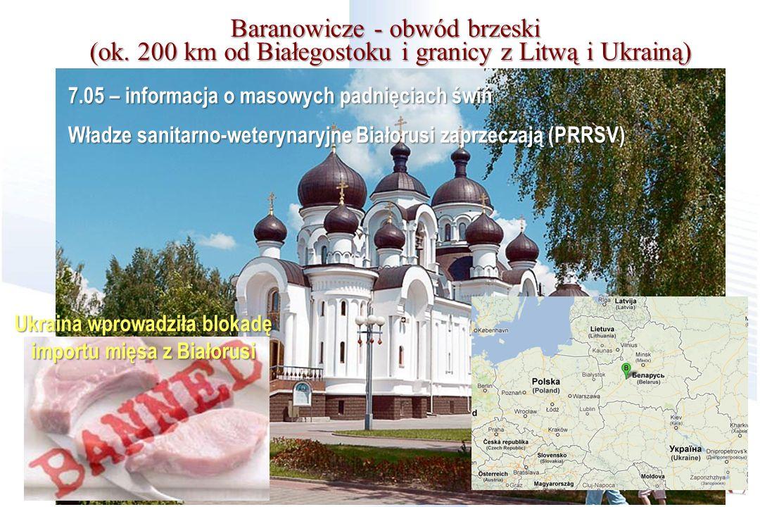 Baranowicze - obwód brzeski (ok. 200 km od Białegostoku i granicy z Litwą i Ukrainą) 7.05 – informacja o masowych padnięciach świń Władze sanitarno-we