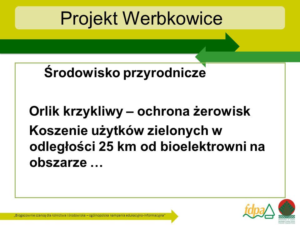 Biogazownie szansą dla rolnictwa i środowiska – ogólnopolska kampania edukacyjno-informacyjna Projekt Werbkowice Planowane parametry bioelektrowni Werbkowice : - zainstalowana moc elektryczna 0,999 MWe - zainstalowana moc cieplna 1,04 MWt.