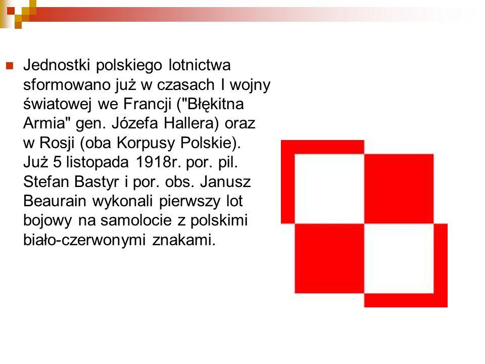 Jednostki polskiego lotnictwa sformowano już w czasach I wojny światowej we Francji (