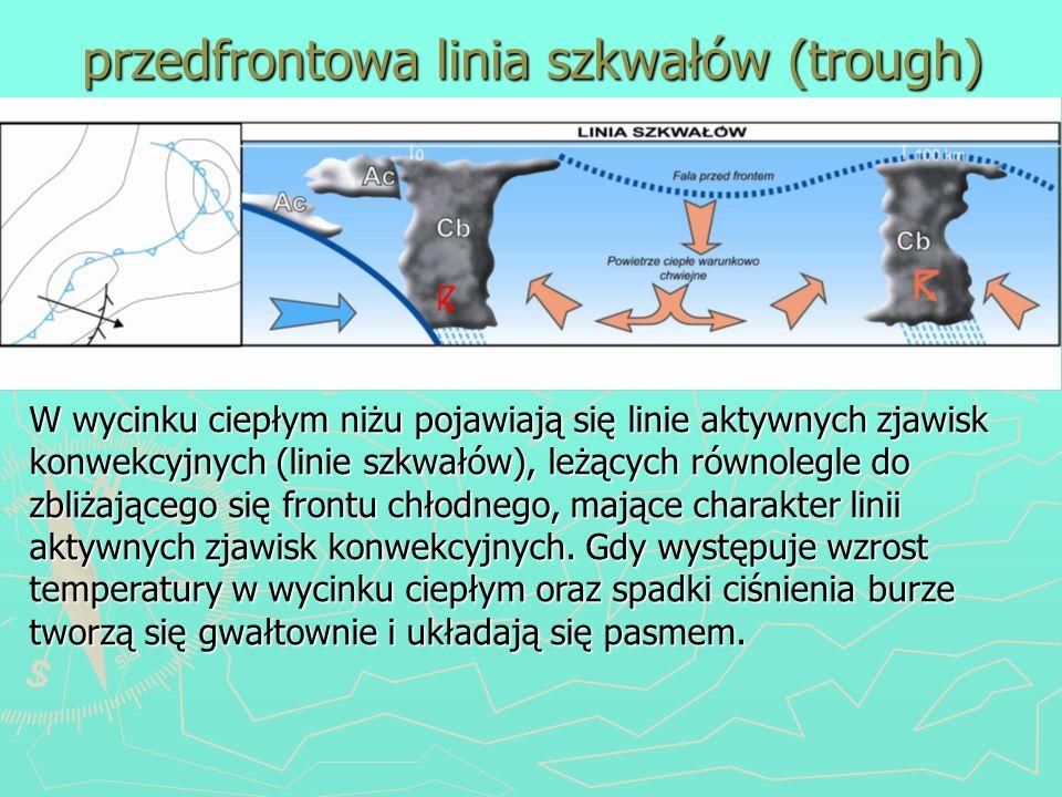 przedfrontowa linia szkwałów (trough) W wycinku ciepłym niżu pojawiają się linie aktywnych zjawisk konwekcyjnych (linie szkwałów), leżących równolegle