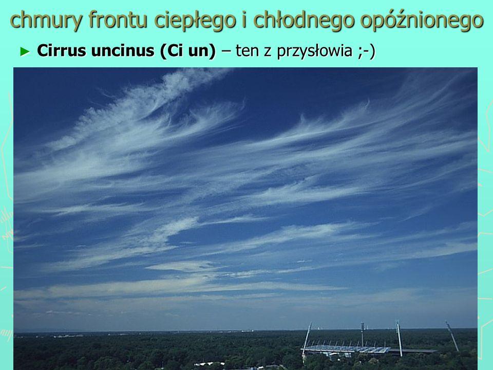 chmury frontu ciepłego i chłodnego opóźnionego Cirrus uncinus (Ci un) – ten z przysłowia ;-) Cirrus uncinus (Ci un) – ten z przysłowia ;-)