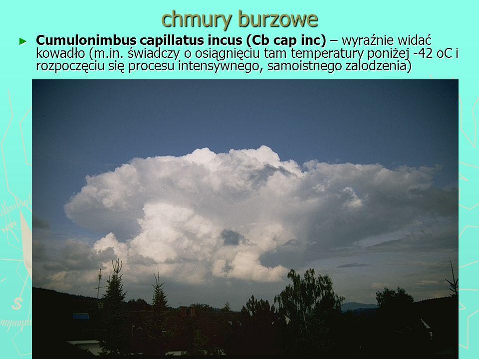 chmury burzowe Cumulonimbus capillatus incus (Cb cap inc) – wyraźnie widać kowadło (m.in. świadczy o osiągnięciu tam temperatury poniżej -42 oC i rozp