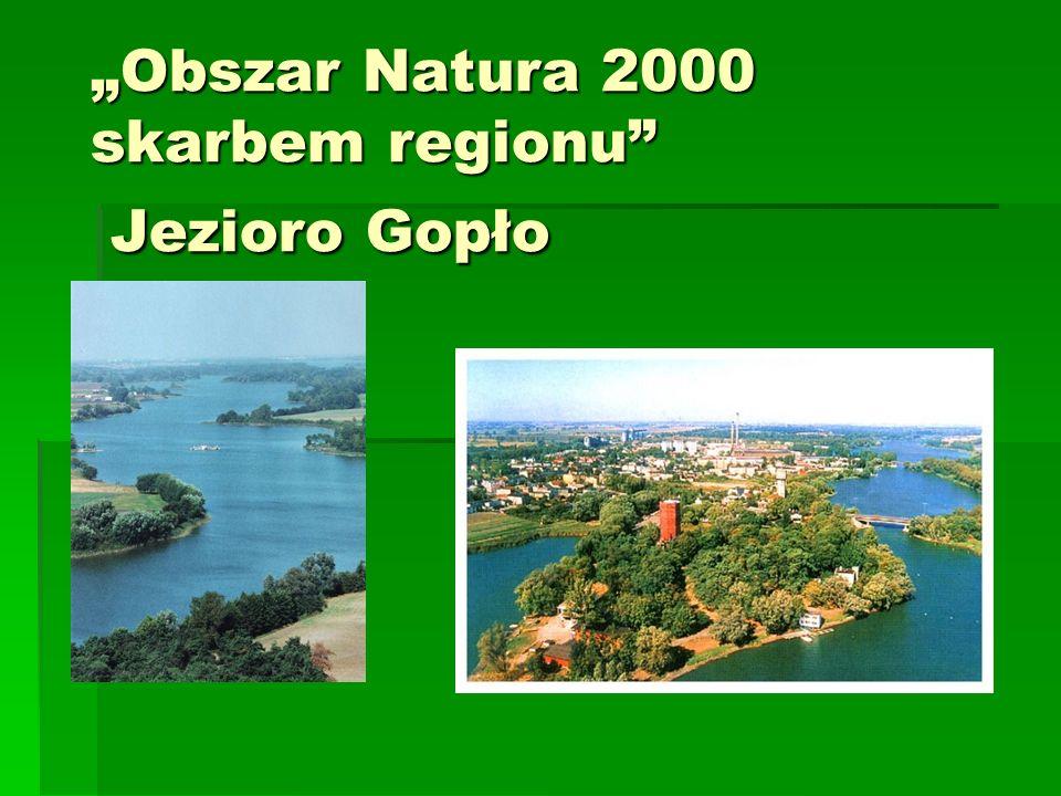 Obszar Natura 2000 skarbem regionu Jezioro Gopło
