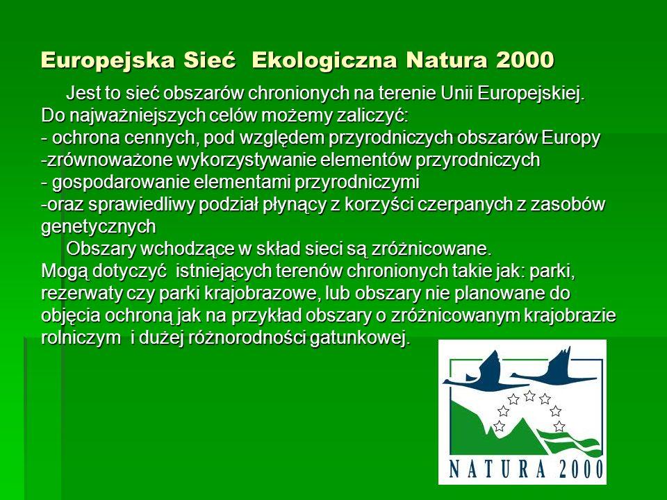 Europejska Sieć Ekologiczna Natura 2000 Jest to sieć obszarów chronionych na terenie Unii Europejskiej. Do najważniejszych celów możemy zaliczyć: - oc