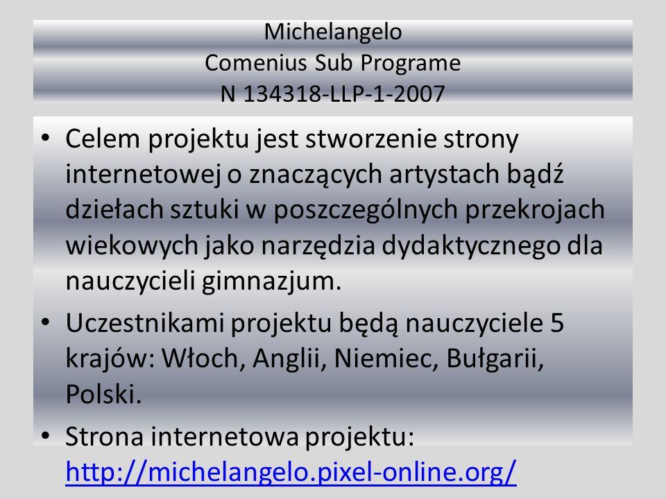 Michelangelo Comenius Sub Programe N 134318-LLP-1-2007 Celem projektu jest stworzenie strony internetowej o znaczących artystach bądź dziełach sztuki w poszczególnych przekrojach wiekowych jako narzędzia dydaktycznego dla nauczycieli gimnazjum.