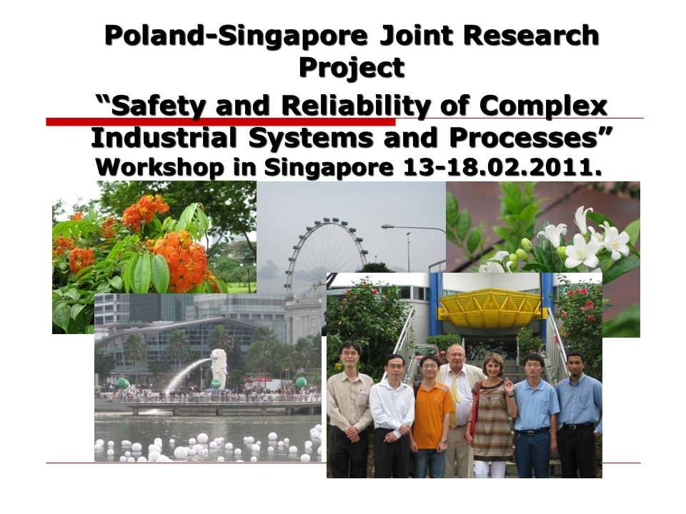 Poland-Singapore Joint Research Project Safety and Reliability of Complex Industrial Systems and Processes Workshop in Singapore 13-18.02.2011.