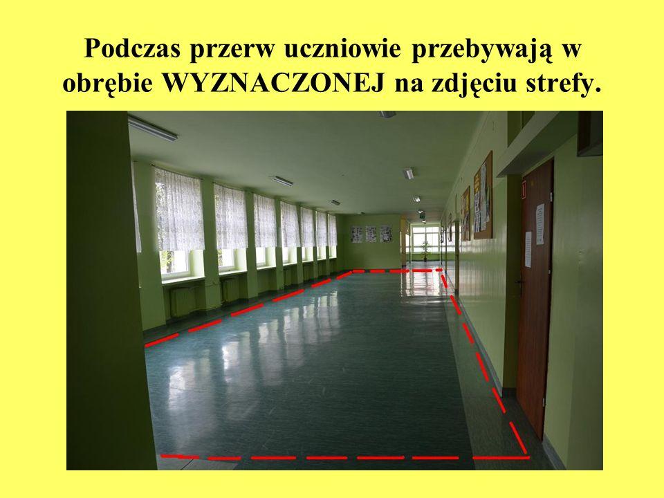 Podczas przerw uczniowie przebywają w obrębie WYZNACZONEJ na zdjęciu strefy.