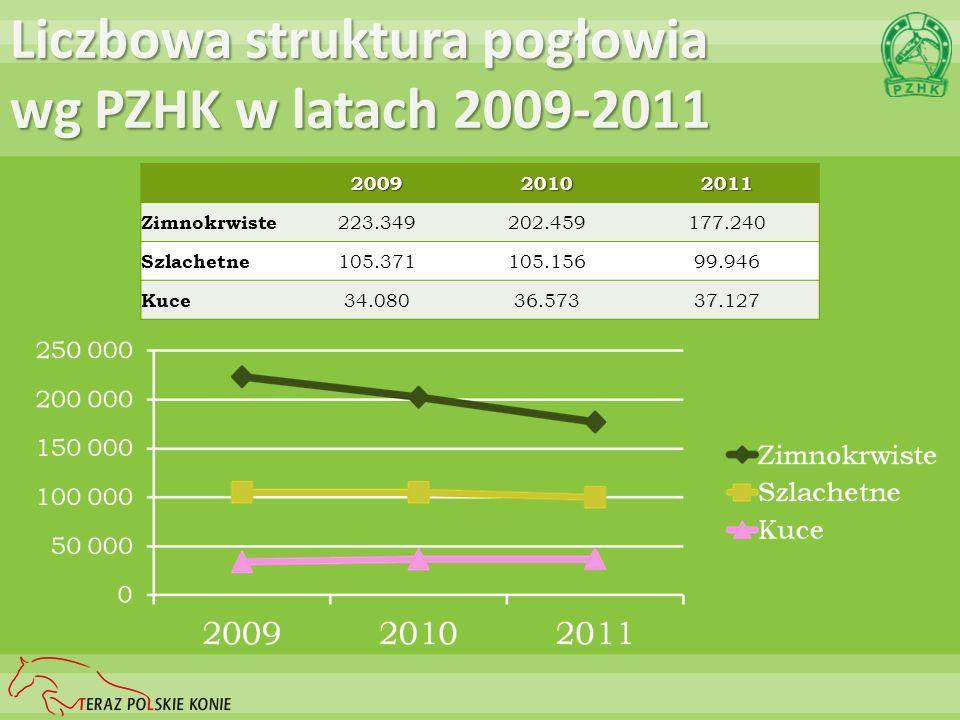 Liczbowa struktura pogłowia wg PZHK w latach 2009-2011 200920102011 Zimnokrwiste 223.349202.459177.240 Szlachetne 105.371105.15699.946 Kuce 34.08036.5