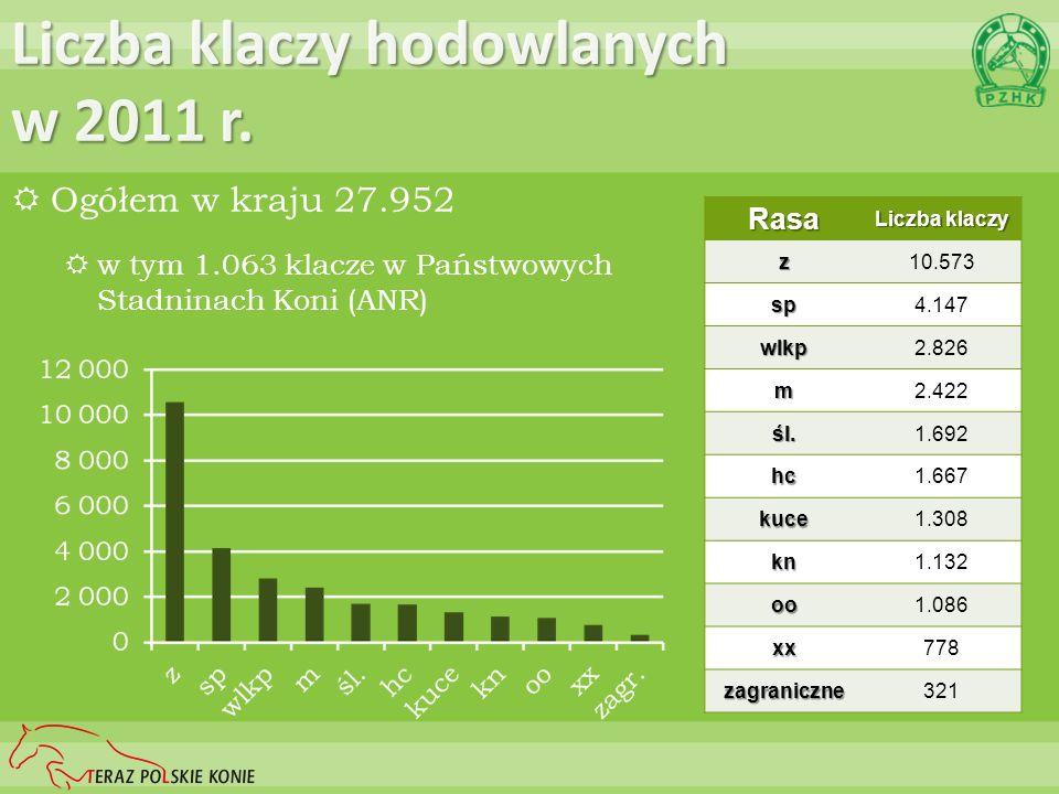 Liczba klaczy hodowlanych w 2011 r. Ogółem w kraju 27.952 w tym 1.063 klacze w Państwowych Stadninach Koni (ANR) Rasa Liczba klaczy z10.573 sp4.147 wl