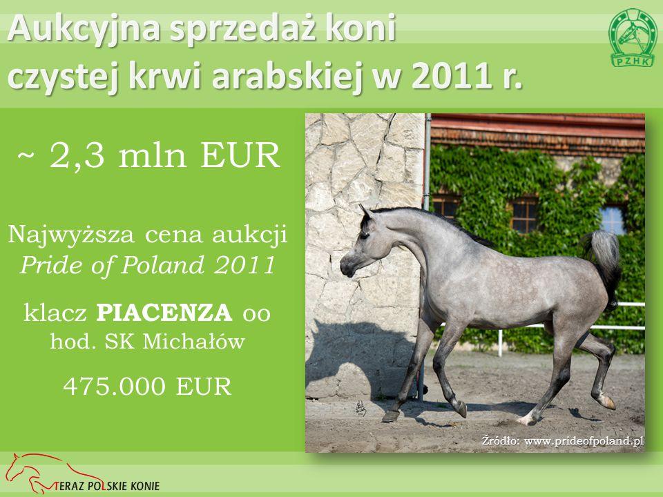 Aukcyjna sprzedaż koni czystej krwi arabskiej w 2011 r. ~ 2,3 mln EUR Najwyższa cena aukcji Pride of Poland 2011 klacz PIACENZA oo hod. SK Michałów 47
