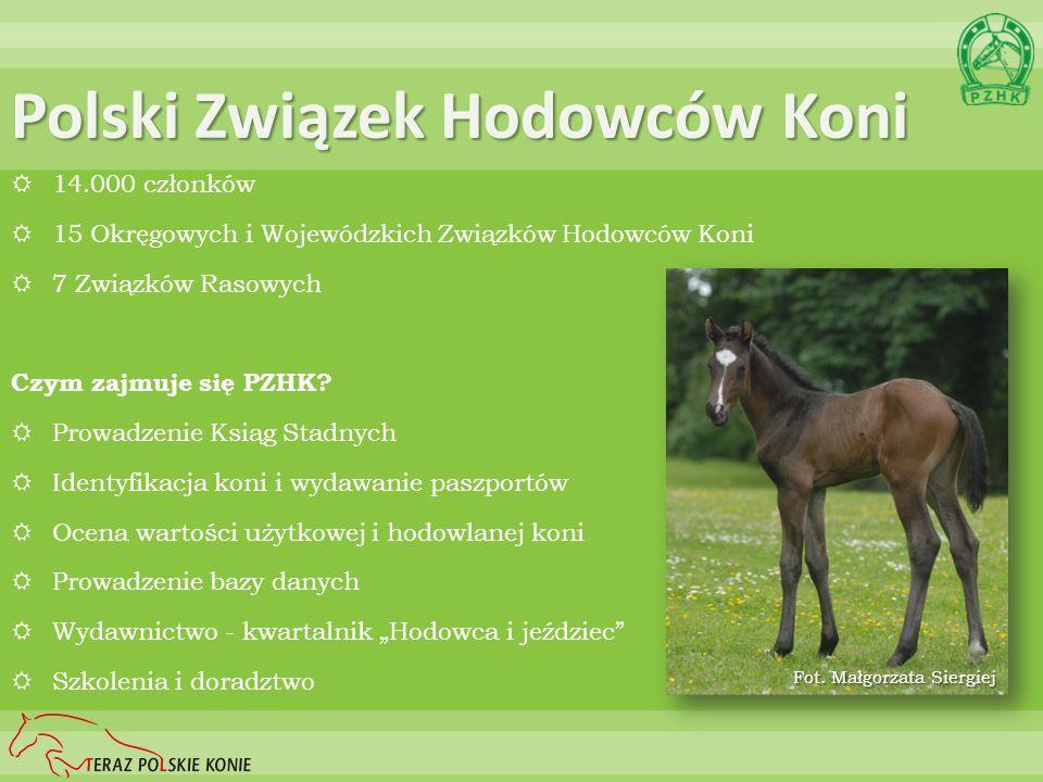 Polski Związek Hodowców Koni 14.000 członków 15 Okręgowych i Wojewódzkich Związków Hodowców Koni 7 Związków Rasowych Czym zajmuje się PZHK? Prowadzeni