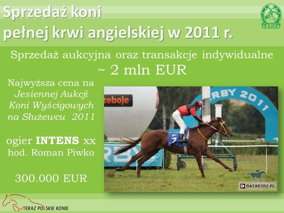 Sprzedaż koni pełnej krwi angielskiej w 2011 r. Sprzedaż aukcyjna oraz transakcje indywidualne ~ 2 mln EUR Najwyższa cena na Jesiennej Aukcji Koni Wyś
