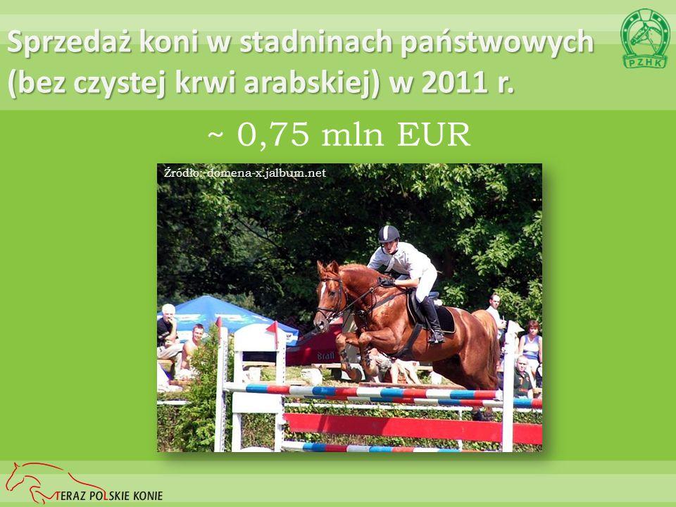 Sprzedaż koni w stadninach państwowych (bez czystej krwi arabskiej) w 2011 r. ~ 0,75 mln EUR Źródło: domena-x.jalbum.net