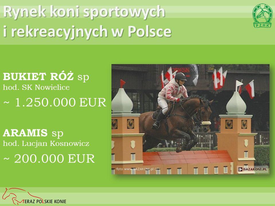 ARAMIS sp hod. Lucjan Kosnowicz ~ 200.000 EUR Rynek koni sportowych i rekreacyjnych w Polsce BUKIET RÓŻ sp hod. SK Nowielice ~ 1.250.000 EUR