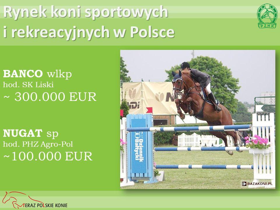 NUGAT sp hod. PHZ Agro-Pol ~100.000 EUR Rynek koni sportowych i rekreacyjnych w Polsce BANCO wlkp hod. SK Liski ~ 300.000 EUR
