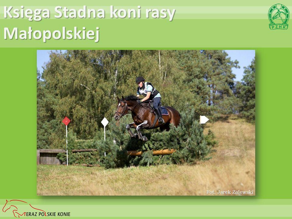 Księga Stadna koni rasy Wielkopolskiej Fot. Karolina Wengerek
