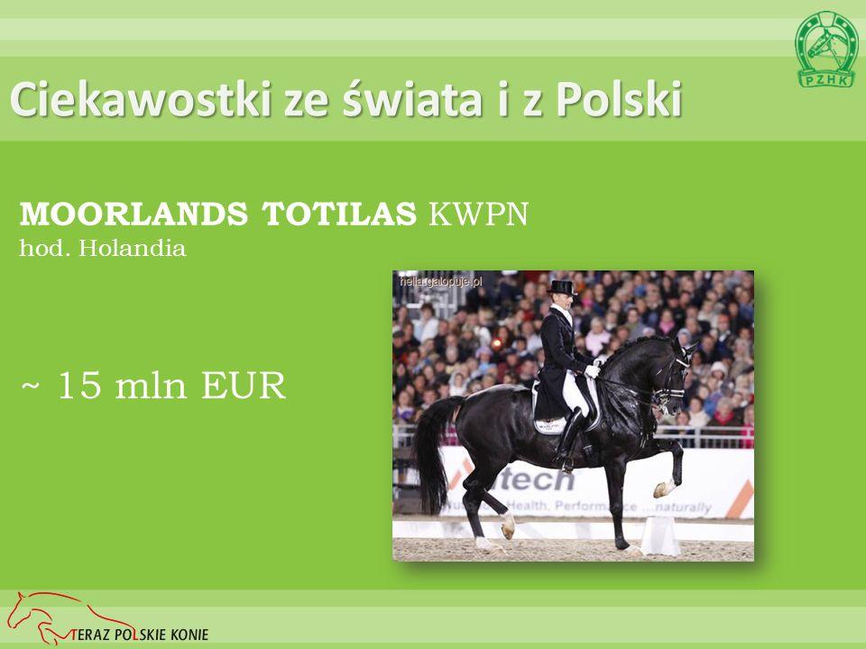 Ciekawostki ze świata i z Polski MOORLANDS TOTILAS KWPN hod. Holandia ~ 15 mln EUR