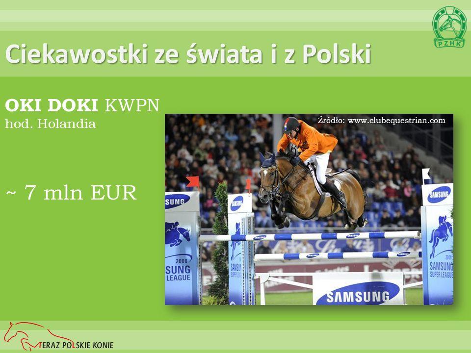 Ciekawostki ze świata i z Polski OKI DOKI KWPN hod. Holandia ~ 7 mln EUR Źródło: www.clubequestrian.com