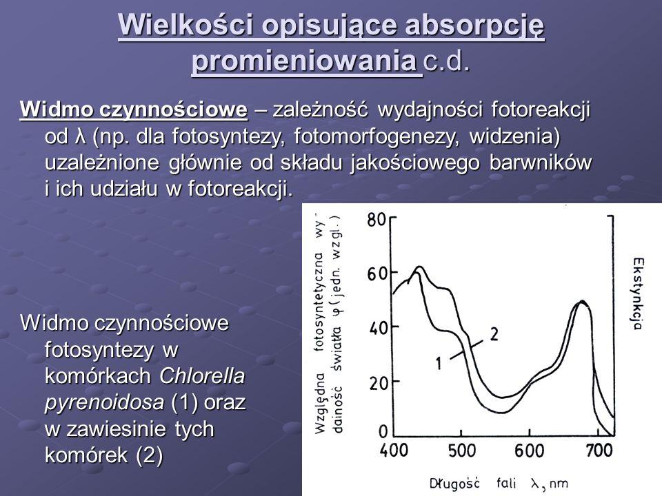 Wielkości opisujące absorpcję promieniowania c.d. Widmo czynnościowe – zależność wydajności fotoreakcji od λ (np. dla fotosyntezy, fotomorfogenezy, wi