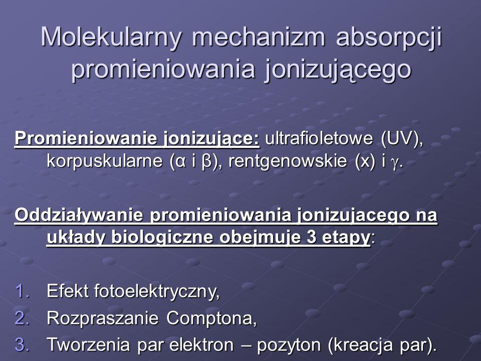 Molekularny mechanizm absorpcji promieniowania jonizującego Promieniowanie jonizujące: ultrafioletowe (UV), korpuskularne (α i β), rentgenowskie (x) i