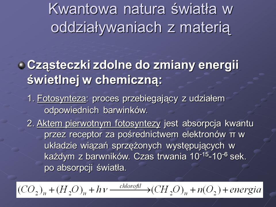 Kwantowa natura światła w oddziaływaniach z materią Cząsteczki zdolne do zmiany energii świetlnej w chemiczną: 1. Fotosynteza: proces przebiegający z