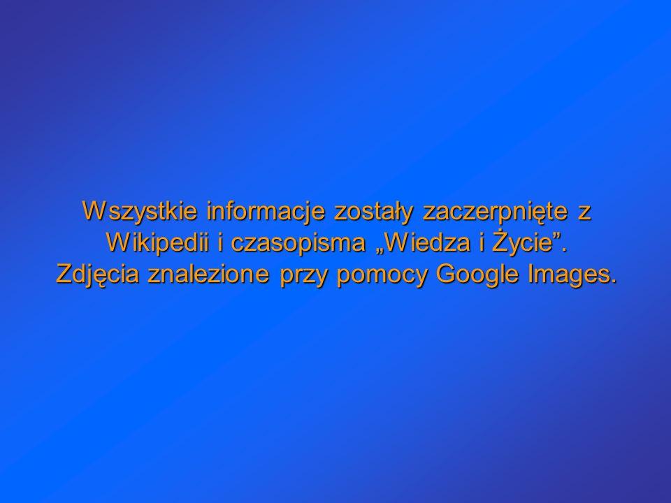 Wszystkie informacje zostały zaczerpnięte z Wikipedii i czasopisma Wiedza i Życie. Zdjęcia znalezione przy pomocy Google Images.