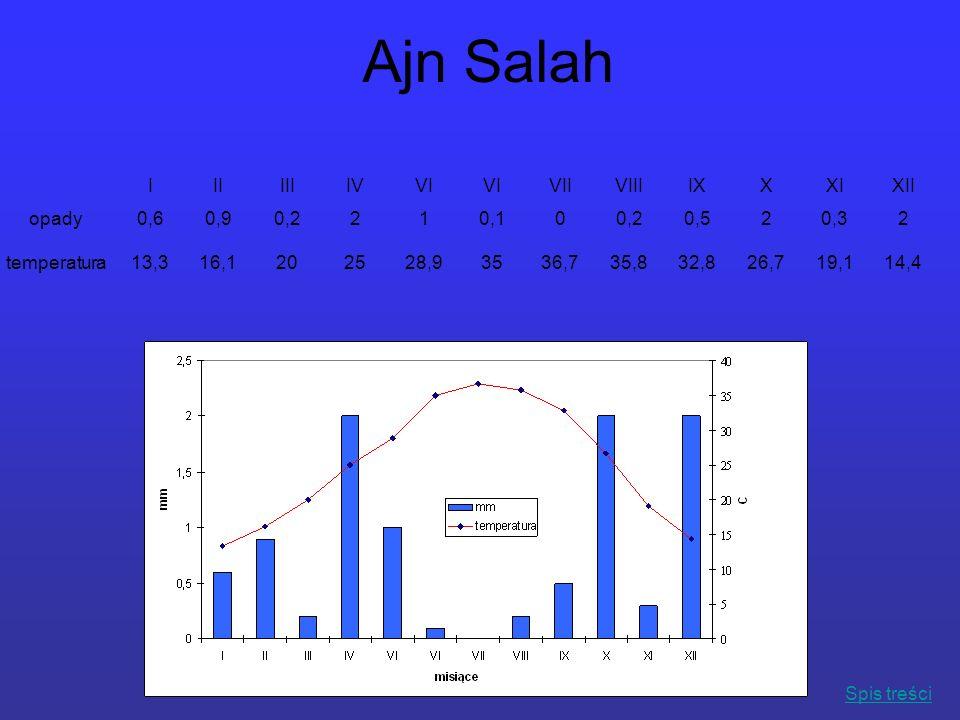 Ajn Salah IIIIIIIVVI VIIVIIIIXXXIXII opady0,60,90,2210,100,20,520,32 temperatura13,316,1202528,93536,735,832,826,719,114,4 Spis treści