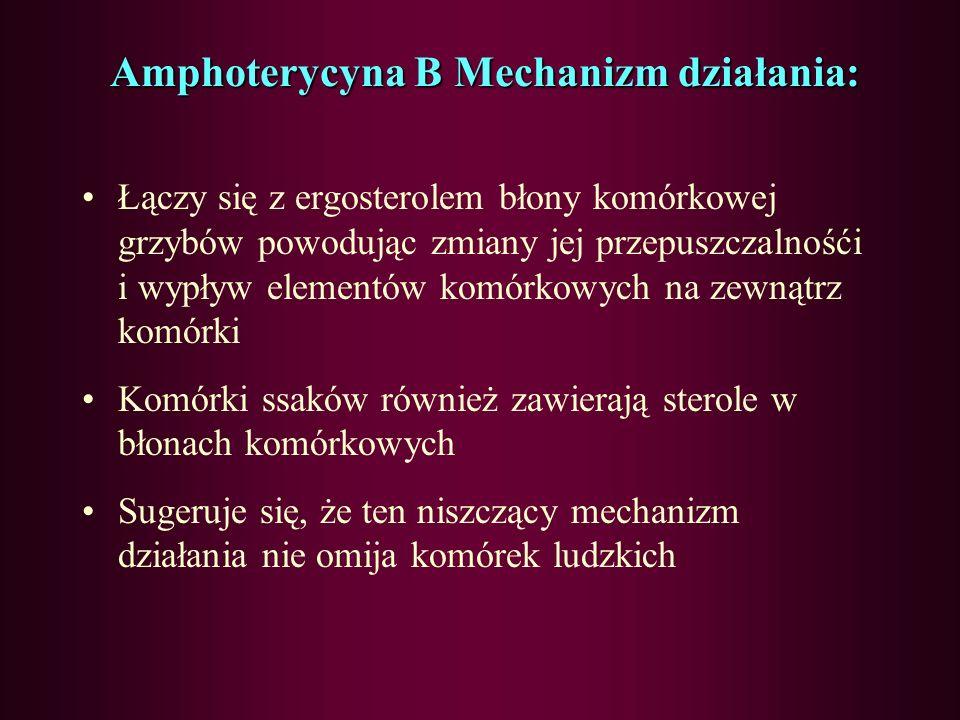 LEKI PRZECIWGRZYBICZNE POLIENY antybiotyki naturalne AZOLE (syntetyczne o 5- członowym pierścieniu) ANTYMETABOLITYECHINOKANDYNY Amfoterycyna B Nystaty