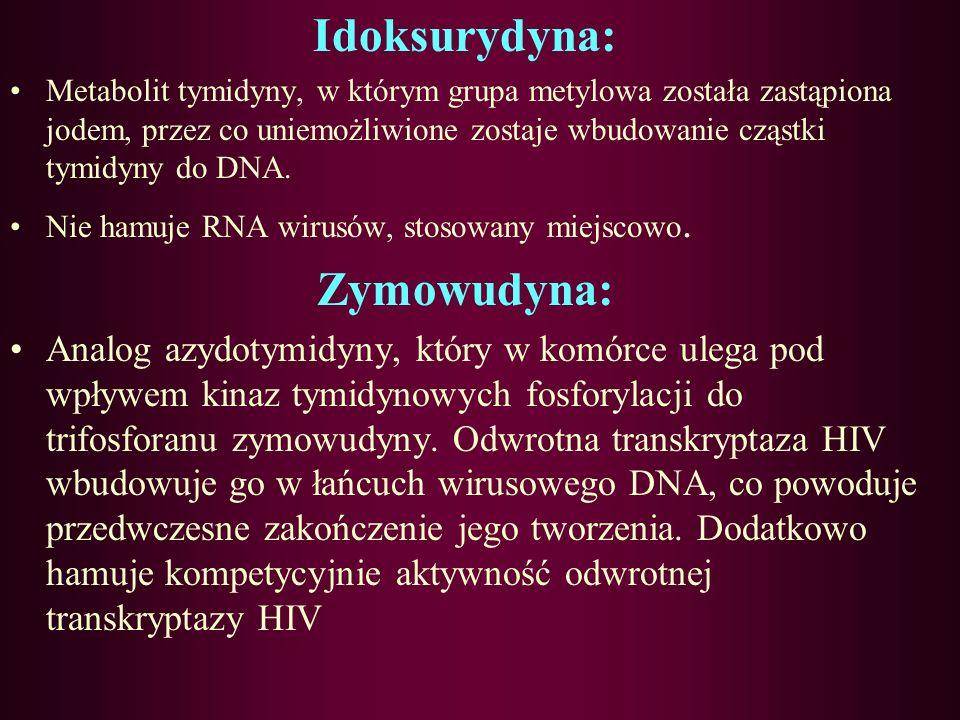 Acyklowir: Analog dezoksyguanozyny, wnika wybiórczo do do komórek zakażonych Herpes, ulega następnie fosforylacji przy udziale wirusowej kinazy tymidy